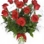 iStock_000002416891XSmall-roses